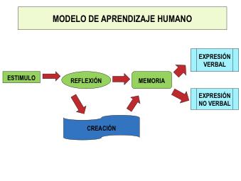 Figura 3: Modelo de aprendizaje humano según V. García Hoz (1988)